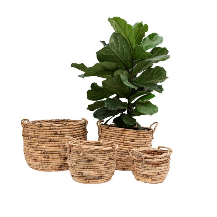 FP Collection Kimika Basket Natural  ] 186212P - Flower Power