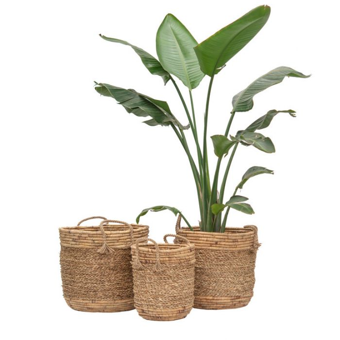 FP Collection Mombasa Basket Natural  ] 186219P - Flower Power