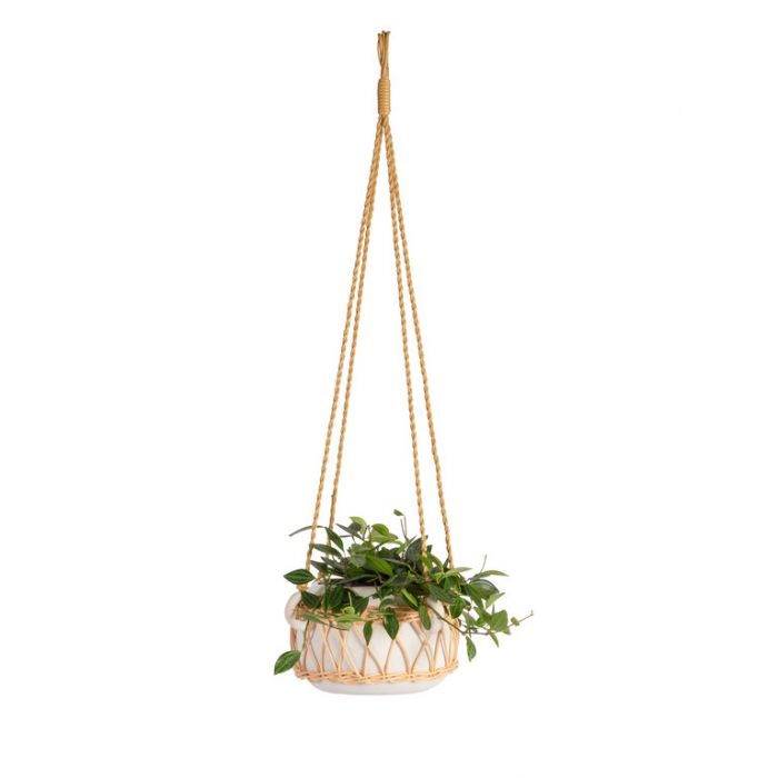 FP Collection Abby Hanging Planter  ] 186231 - Flower Power