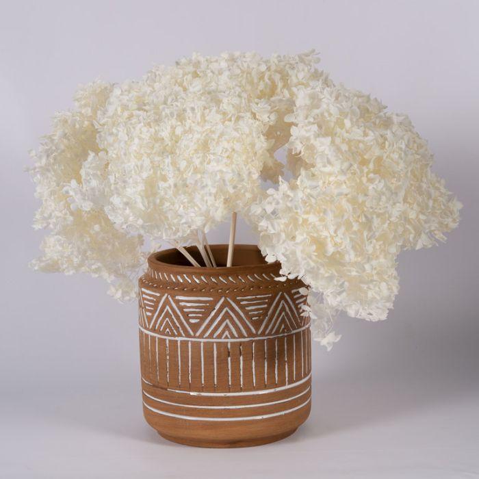 Dried Hydrangea Medium White  ] 187995 - Flower Power
