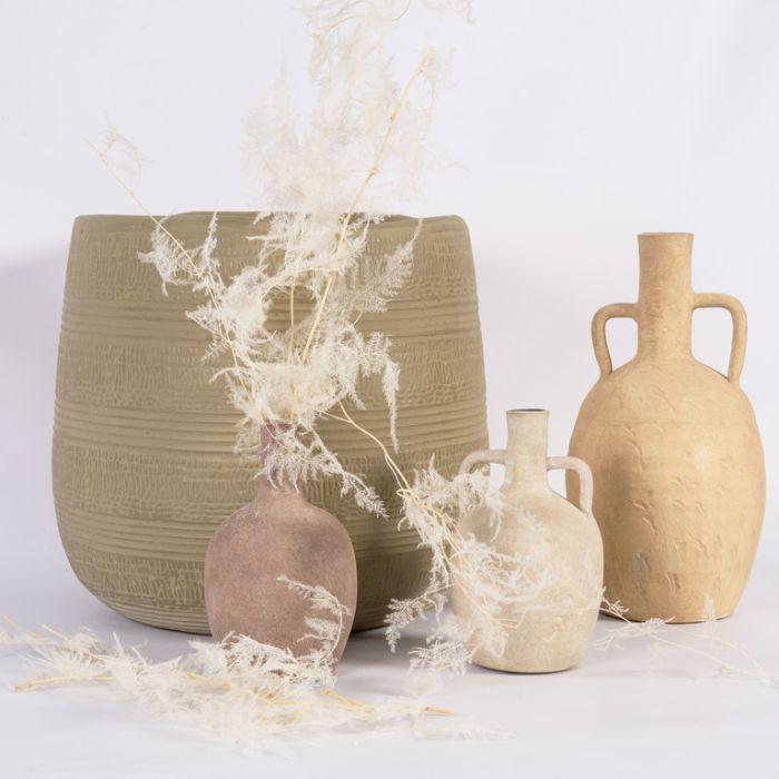Dried Asparagus Fern Extra Long White  ] 188001 - Flower Power