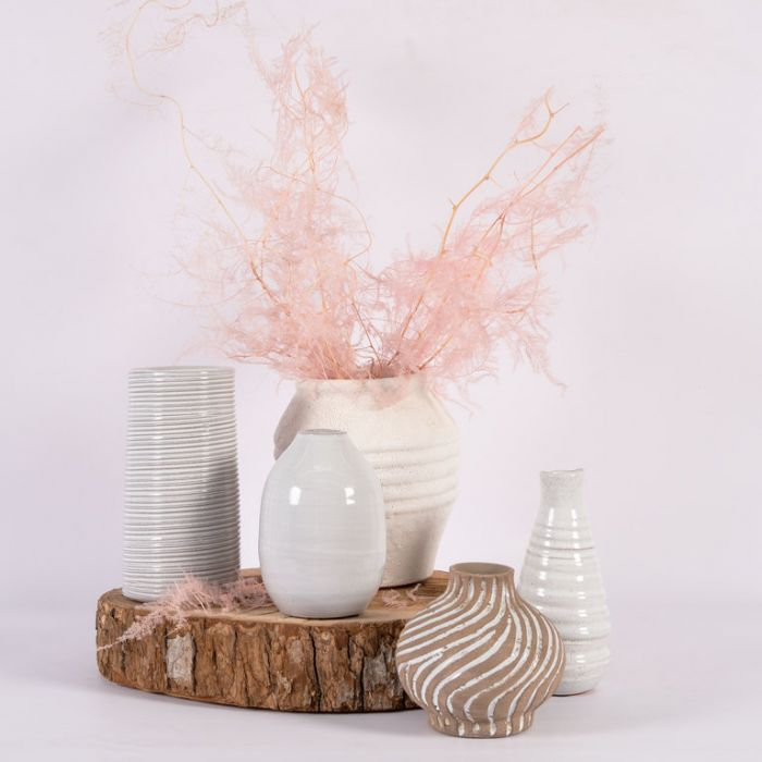 Dried Asparagus Fern Extra Long Pink  ] 188002 - Flower Power