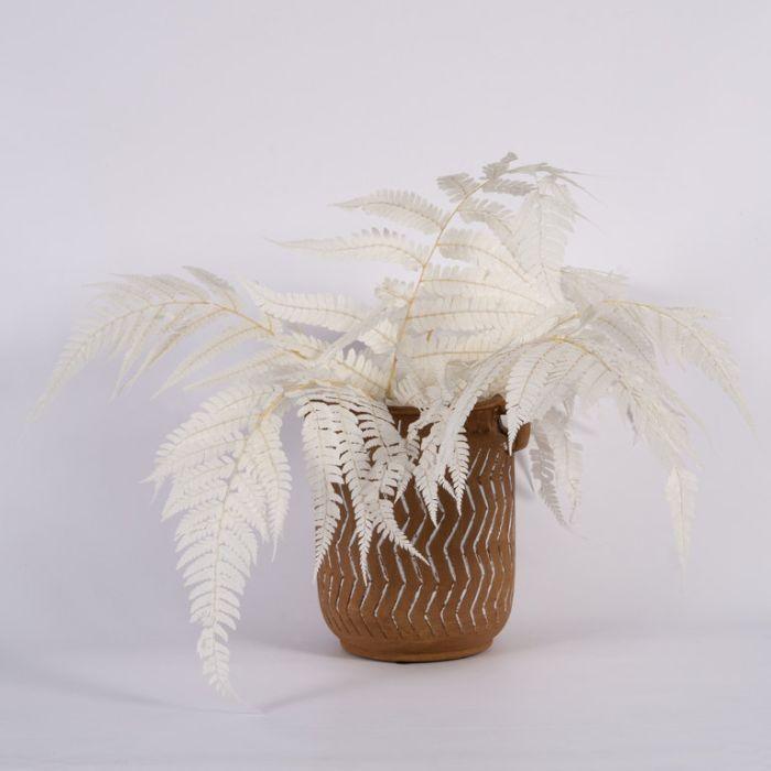 Dried Leather Fern White  ] 188011 - Flower Power