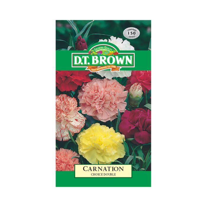 D.T. Brown Carnation Choise Double  ] 5030075025689 - Flower Power
