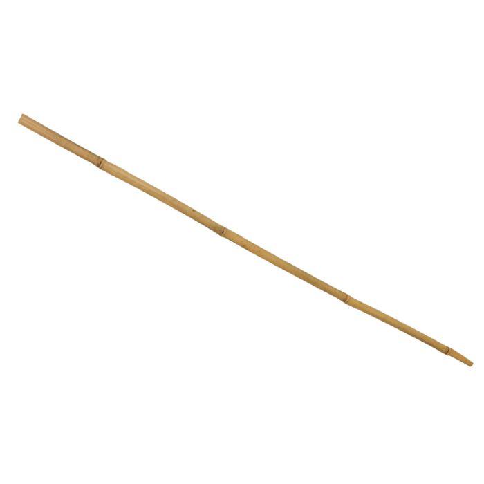 Bamboo Garden Stake Natural  ] 769280P - Flower Power