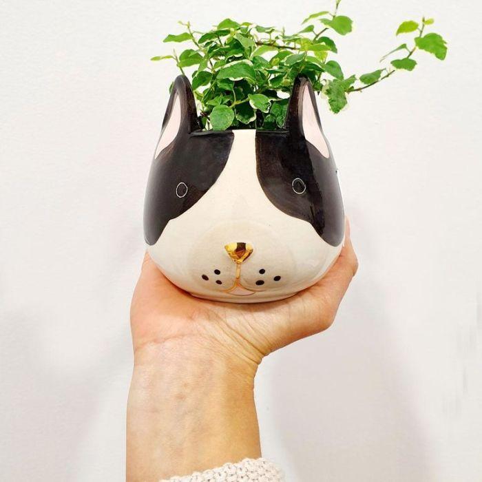 Living Trends French Bulldog Planter  ] 9023029999 - Flower Power