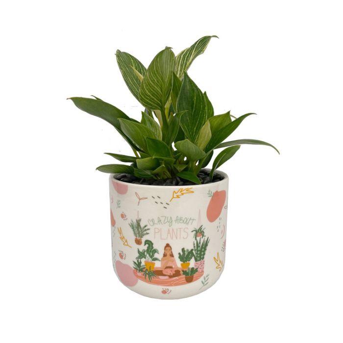 Living Trends Crazy About Plants Planter  ] 9037089999 - Flower Power