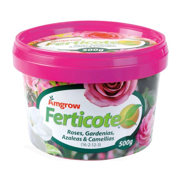 Amgrow Ferticote Roses, Gardenias, Azaleas & Camellias  ] 9310943553381P - Flower Power