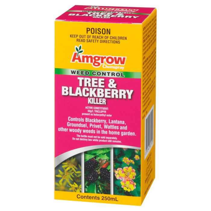 Amgrow Chemspray Tree & Blackberry Killer  ] 9310943801109 - Flower Power