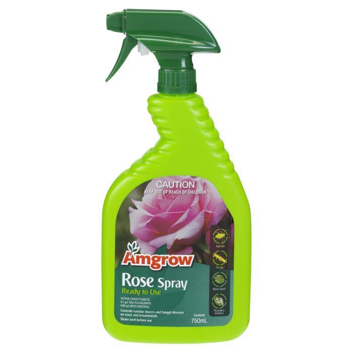 Amgrow Rose Spray Ready To Use  ] 9310943811054 - Flower Power