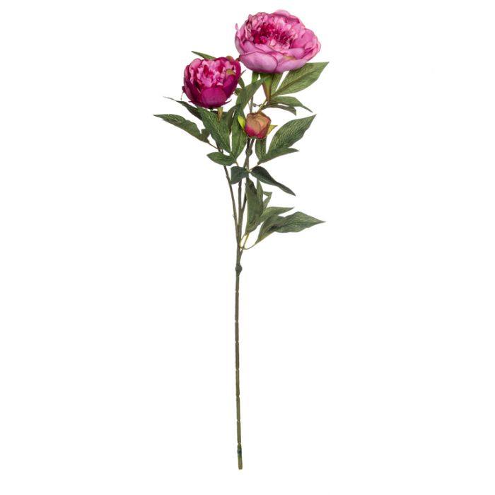 Artificial Peony Spray Dark Mauve  ] 9331460184162 - Flower Power