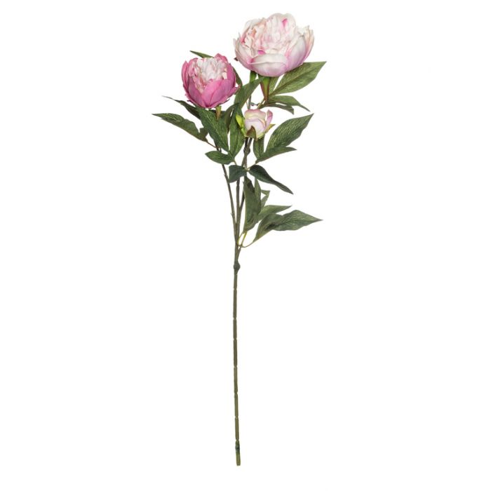 Artificial Peony Spray Light Mauve  ] 9331460184179 - Flower Power