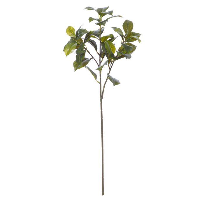 Artificial Branch Camellia Green  ] 9331460208417 - Flower Power
