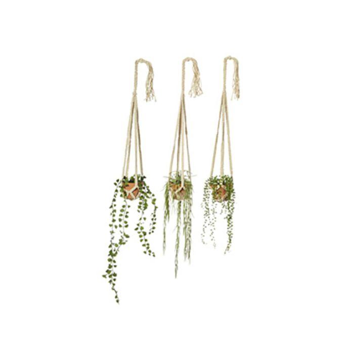 Artificial Succulent Hanging Pot  ] 9331460245726 - Flower Power