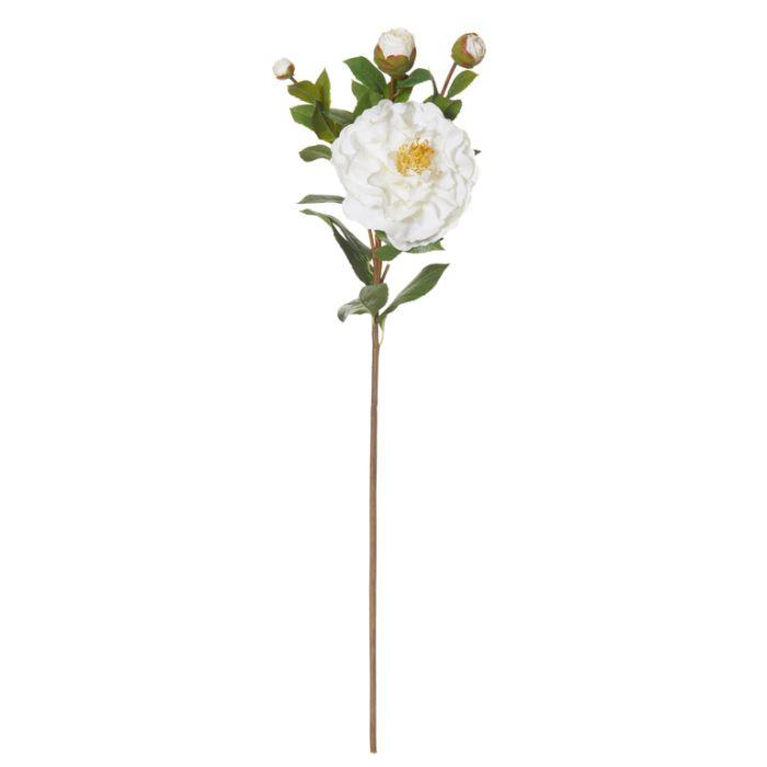 Artificial Camellia Spray White  ] 9331460267636 - Flower Power