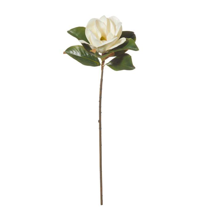 Artificial Stem Flower Luxe Magnolia Cream  ] 9331460279332 - Flower Power