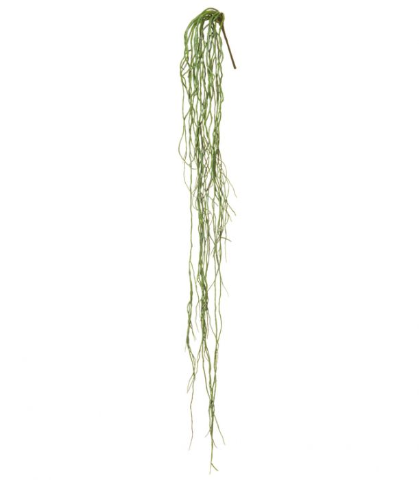 Artificial Wild Vine Rhipsalis  ] 9331460288730 - Flower Power