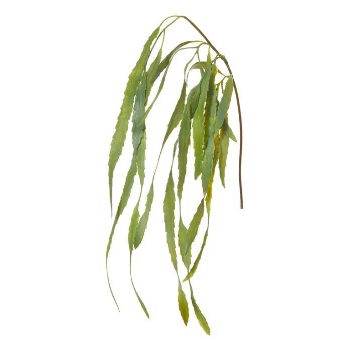Artificial Cactus Vine Green  ] 9331460288754 - Flower Power