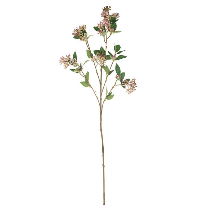 Seeding Spray Pink  ] 9331460298661 - Flower Power