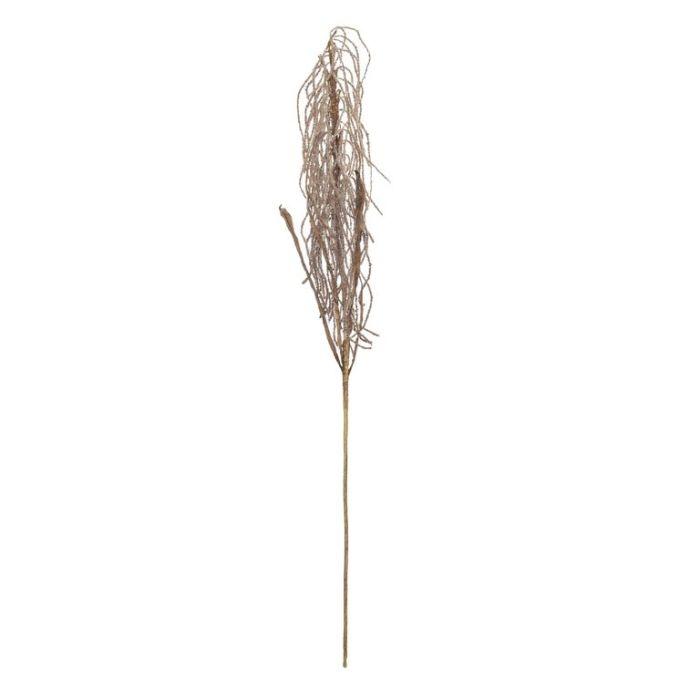 Artificial Field Grass Stem Brown  ] 9331460321789 - Flower Power