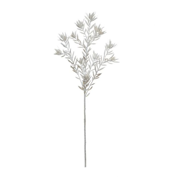 Artificial Leucadendron Spray White  ] 9331460324971 - Flower Power