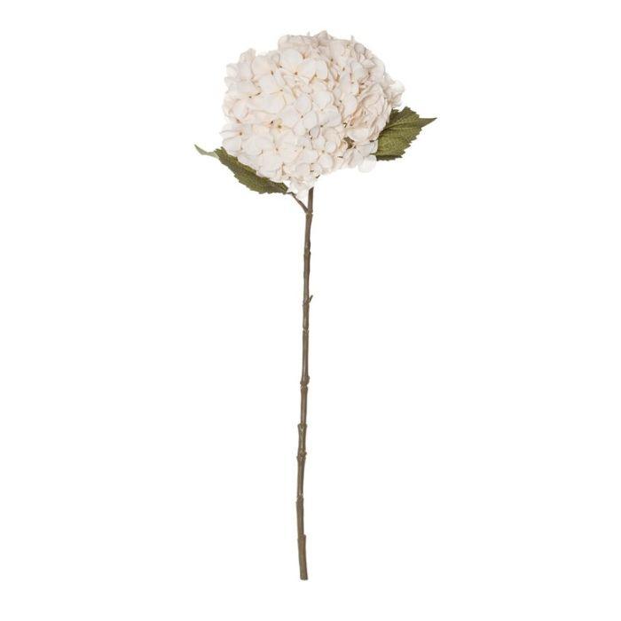 Artificial Hydrangea Stem Ivory  ] 9331460331221 - Flower Power