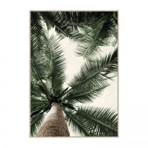 FP Collection Havana Canvas