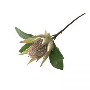FP Collection Artificial Protea Stem Green