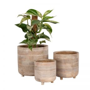 Newport Timber Planter  ] 184414P - Flower Power