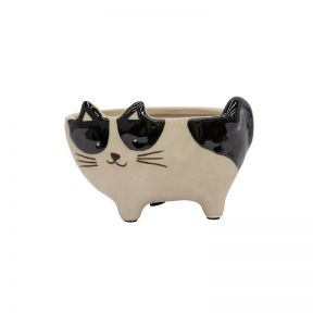 FP Collection Pussy Cat Planter  ] 185463 - Flower Power