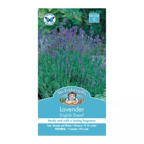 Mr Fothergill's Lavender English Dwarf  ] 5011775000312 - Flower Power