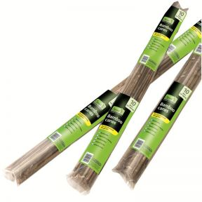 Gardman Bamboo Canes Prepacked Pack of 20  ] 9310522081007P - Flower Power