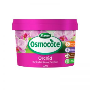 Osmocote Orchid