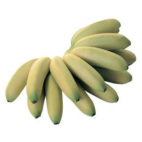 Banana Ladyfinger  ] 9319762577325 - Flower Power