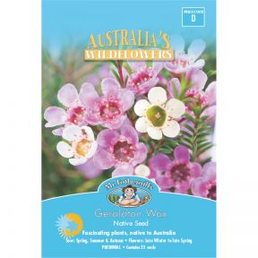 Mr Fothergill's Geraldton Wax  ] 9324190057677 - Flower Power