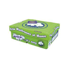 Mushroom Kit White Button  ] 9338606000010 - Flower Power