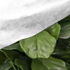 Frost Blanket  ] 9342877003410P - Flower Power