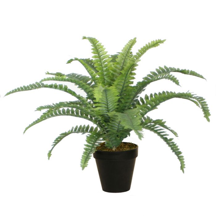 FP Collection Artificial Boston Fern  ] 165898 - Flower Power