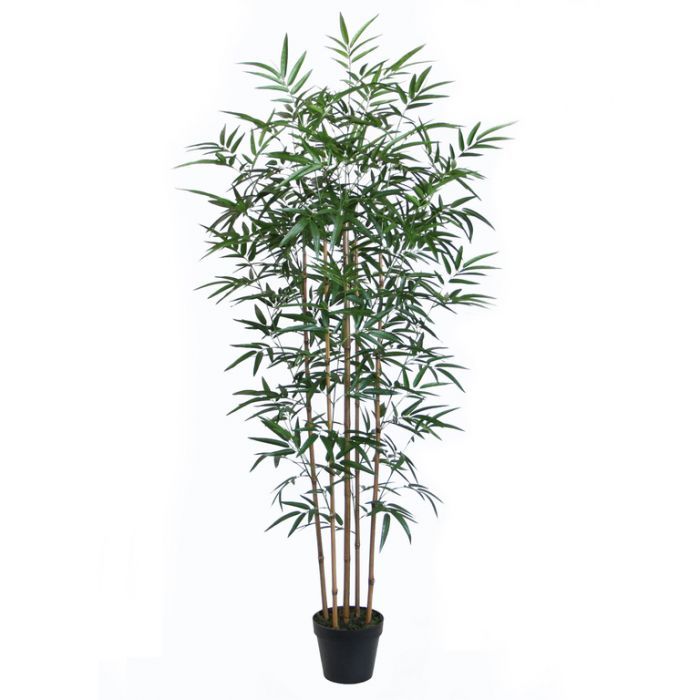 FP Collection Artificial Bamboo  ] 172822 - Flower Power