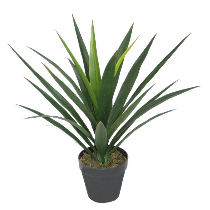 FP Collection Artificial Yucca  ] 176502 - Flower Power