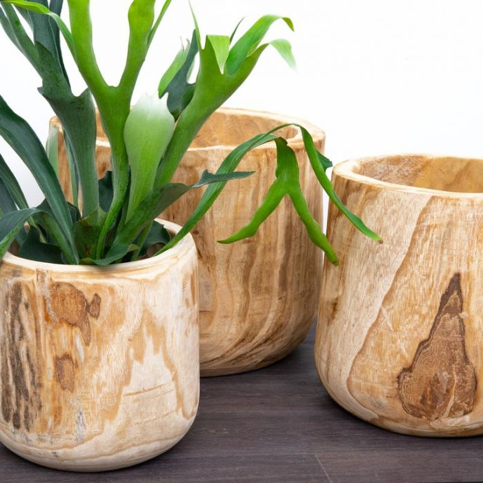 FP Collection Driftwood Timber Planter  ] 178526P - Flower Power