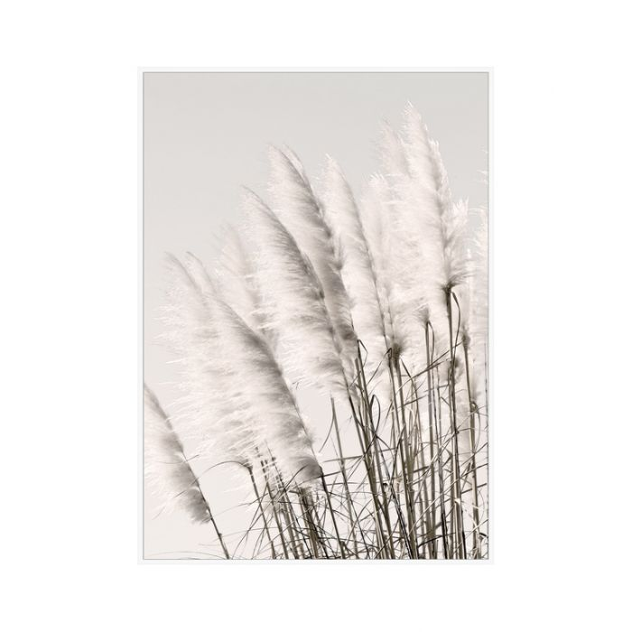 FP Collection Pampus Grass Canvas Wall Art  ] 179974 - Flower Power
