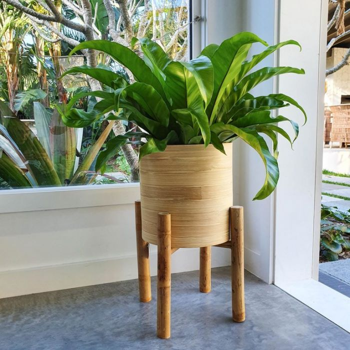 Cangu Bamboo Planter with Stand  ] 180245P - Flower Power
