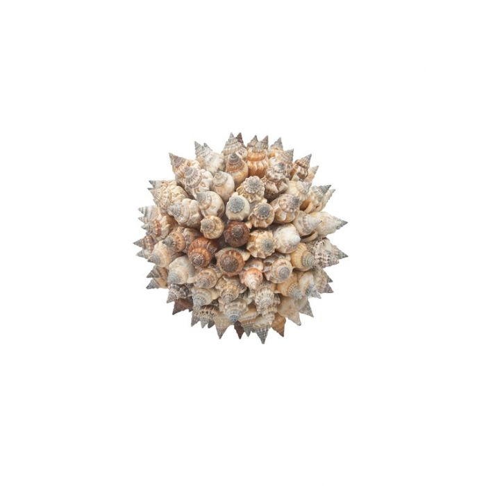 FP Collection Urceus Shell Ball Small  ] 181581P - Flower Power
