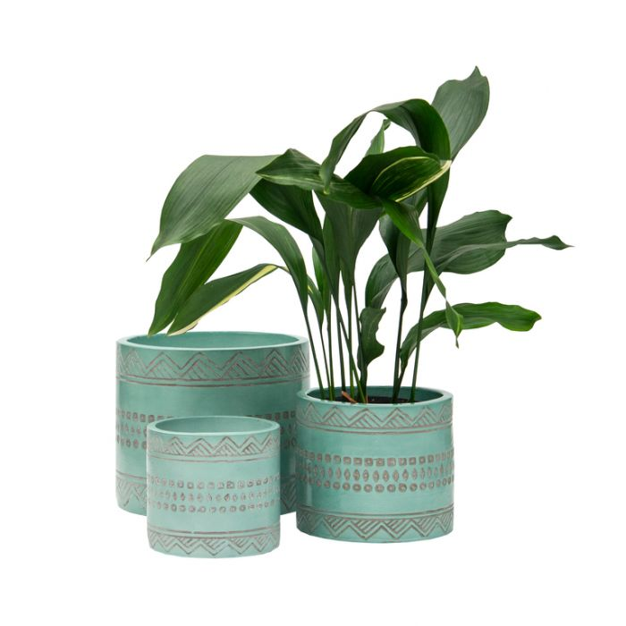 FP Collection Sioux Planter Sage  ] 182115P - Flower Power