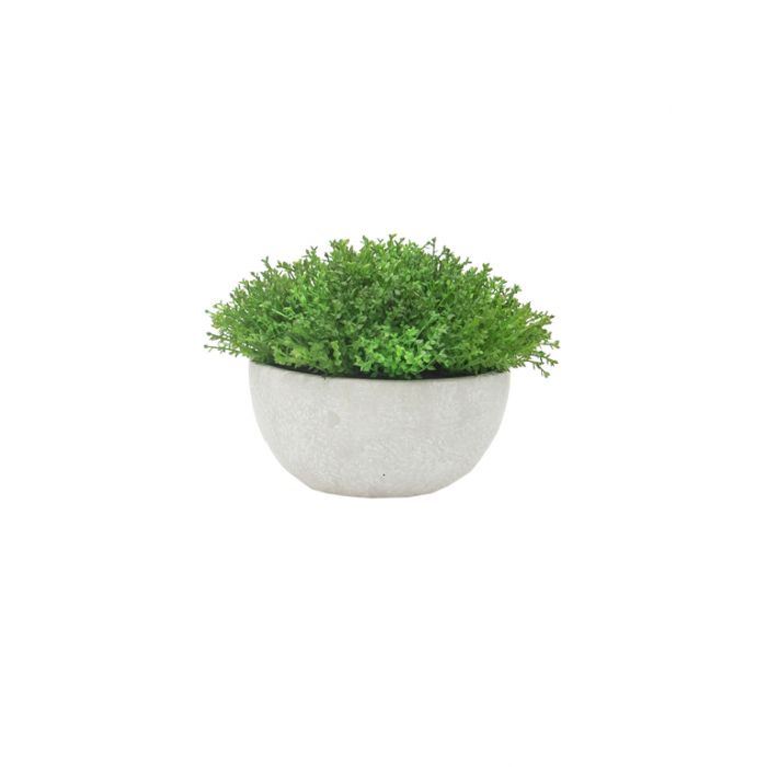 FP Collection Artificial Hebe Plant in Pot  ] 182354 - Flower Power