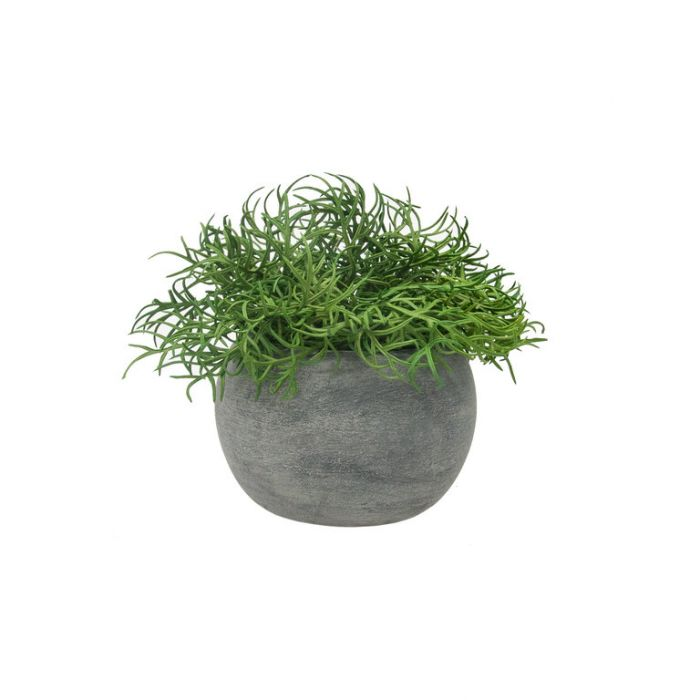 FP Collection Artificial Bonsai Grass in Papier-Mâché Pot  ] 182355 - Flower Power