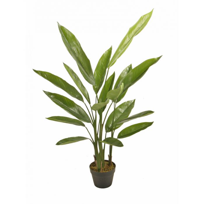 FP Collection Artificial Potted Canna  ] 182447 - Flower Power