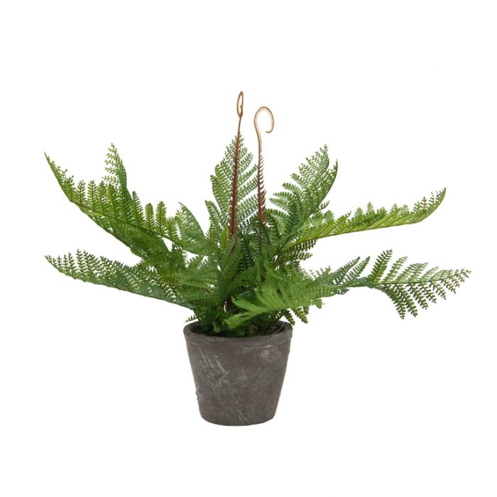 FP Collection Artificial Autumn Fern in Pot  ] 182507 - Flower Power