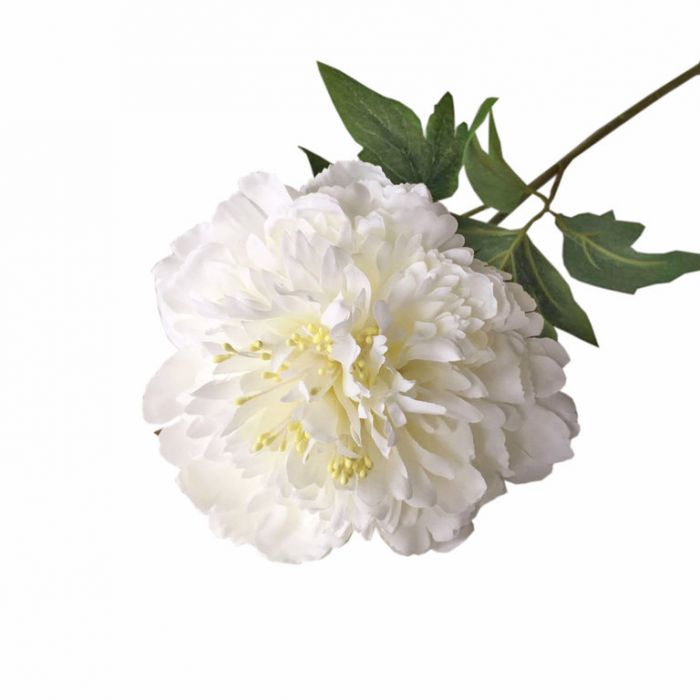 FP Collection Artificial Peony Stem White  ] 182680 - Flower Power